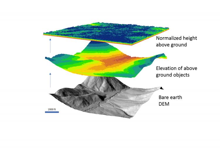 Standard Forest Metrics from USGS 3DEP Lidar | Land Imaging Report Site