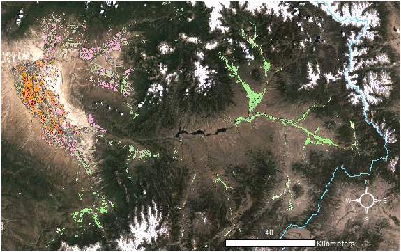 A color-coded irrigated crop map for the Gunnison River Basin, Colorado, displayed over a natural color mosaic of Thematic Mapper (TM) images acquired during the summer of 2011.  Grass hay (light green) and alfalfa (pink) dominate the higher elevation portions of the basin, while crop diversity increases in the Uncompahgre Valley on the west side of the image.