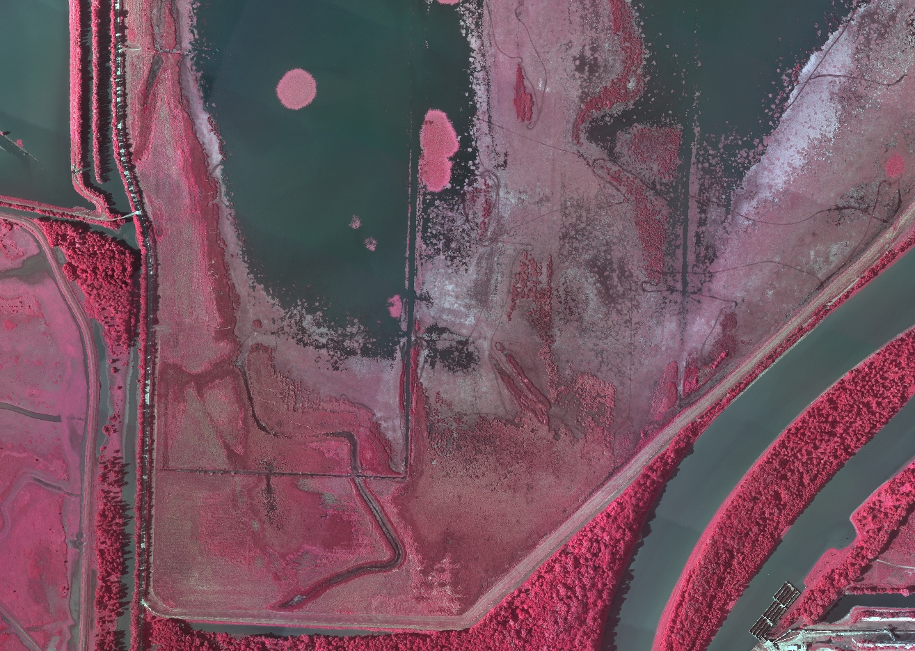 A color infrared aerial image of the lower Emiquon Preserve near Havana, Illinois.