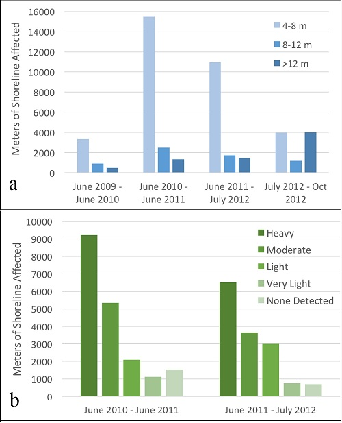 Shoreline impact. (a) The length of shoreline experiencing erosion by magnitude category per time period [2009–2010 = pre-spill; 2010–2011 and 2011–2012 = post-spill; July 2012–Oct 2012 = hurricane]. Note the increase in the post-spill erosion and similarity of the pre-spill and post-storm periods. (b)  Post-spill periods [2010–2011, 2011–2012 pre-storm] documenting higher shoreline erosion with higher oiling severity, and increased erosion of lightly oiled shorelines in the second post-spill year.