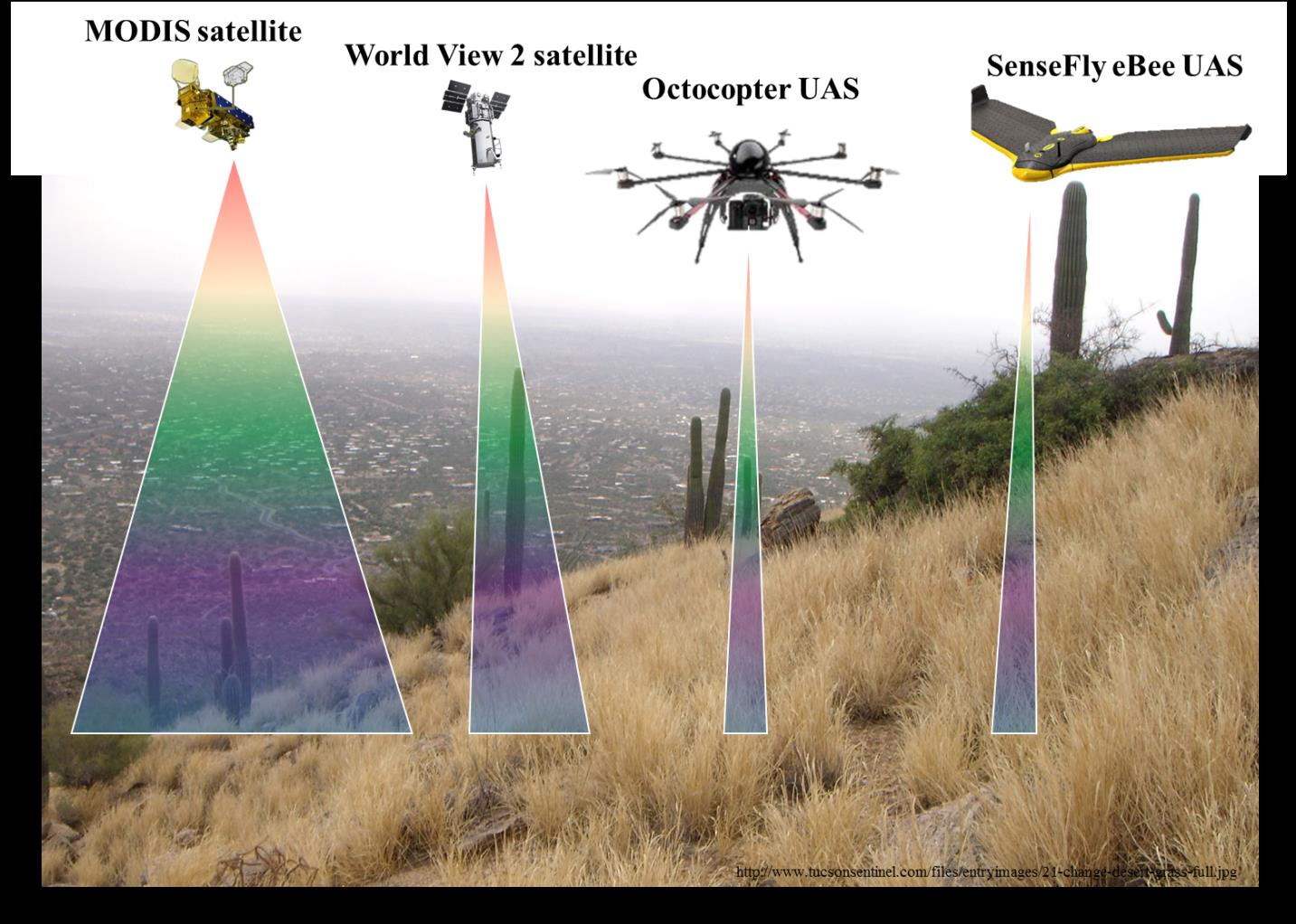 USGS and NAU scientists are developing a hierarchical, multi-sensor approach to detect buffelgrass at different spatial scales. Scientists are leveraging coarse- and fine-resolution satellite imagery (from MODIS and WorldView-2, respectively) and much finer resolution data from the UAS platforms shown here that carry sensors to acquire multispectral, hyperspectral, photogrammetric, and lidar measurements of vegetation, soil, and topography.