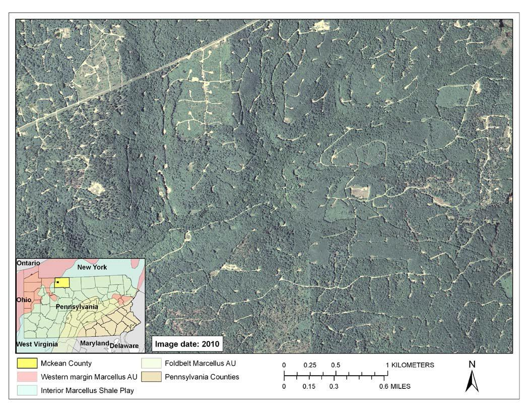 A forested landscape in McKean County, Pennsylvania, showing the distribution of roads, well pads and pipelines related to combined hydrocarbon development. This particular pattern of disturbance is primarily the result of conventional oil and gas development but highlights the combined effects of decades of hydrocarbon extraction in Pennsylvania. Source: National Agricultural Imagery Program.