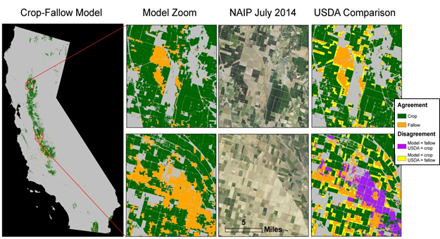 Automated mapping of croplands and cropland fallows. The ACCA model (Figure left, with zoomed insets adjacent) compares the current MODIS monthly greenness to historical greenness patterns observed between 2001 and 2013 and to cultivated pixels with its current NOAA Climate Division neighborhood. The insets at right show how well this model fits with the model produced by the USDA, which uses Landsat 8, Deimos, and Farm Service Agency data. The center insets show the NAIP aerial imagery collected in July 2014. This model can easily translate to new areas because it looks at the relative greenness of a pixel temporally and spatially, thereby self-calibrating to new locations.