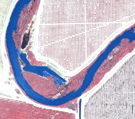 Open water surface layer (transparent blue) shown over CIR aerial imagery of the San Joaquin River, CA.