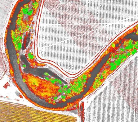 Vegetation height (red = 5 feet, green = 50 feet or more) derived from lidar data, San Joaquin River, CA.