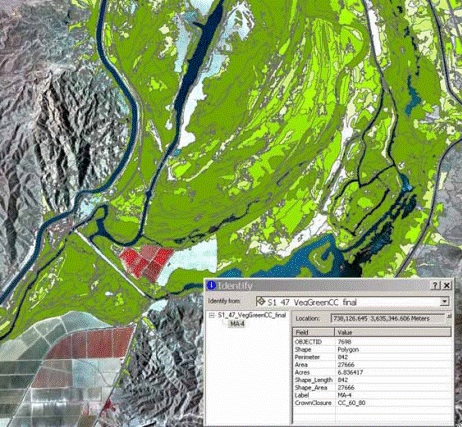 Example of riparian vegetation canopy closure classes derived from high-resolution aerial imagery and object-based image classification along Lower Colorado River.