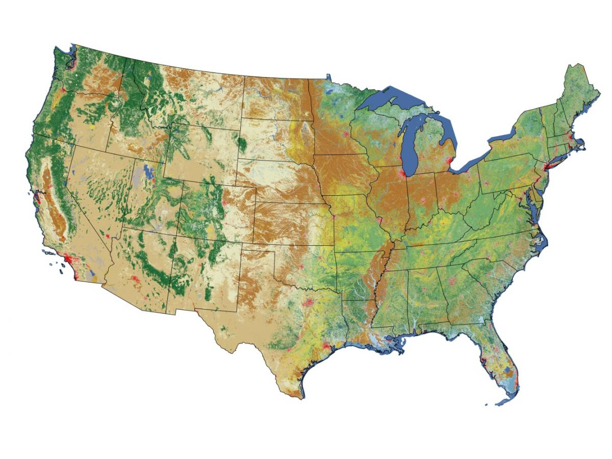 The National Land Cover Database (NLCD) land cover layer is one of several primary and supplementary layers in NLCD 2006. NLCD 2006 is the most recent 30-meter, seamless, wall-to-wall land cover database for the conterminous United States.