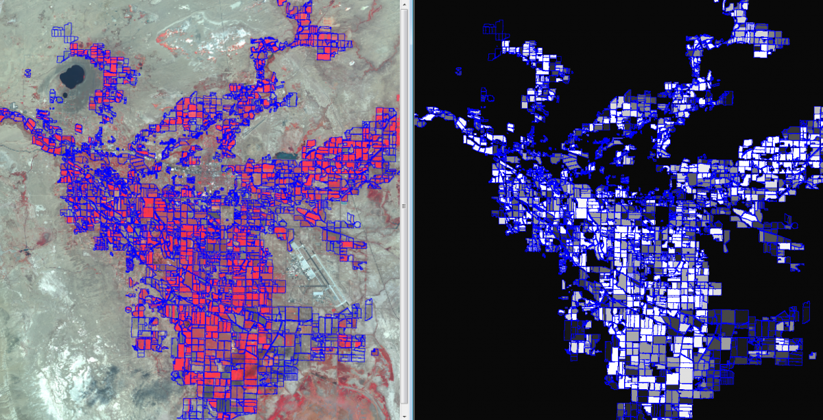 Left: SPOT satellite imagery with agricultural field borders. Right: grayscale image of mean Normalized Difference Vegetation Index (NDVI) with field borders (white = highly vegetated).