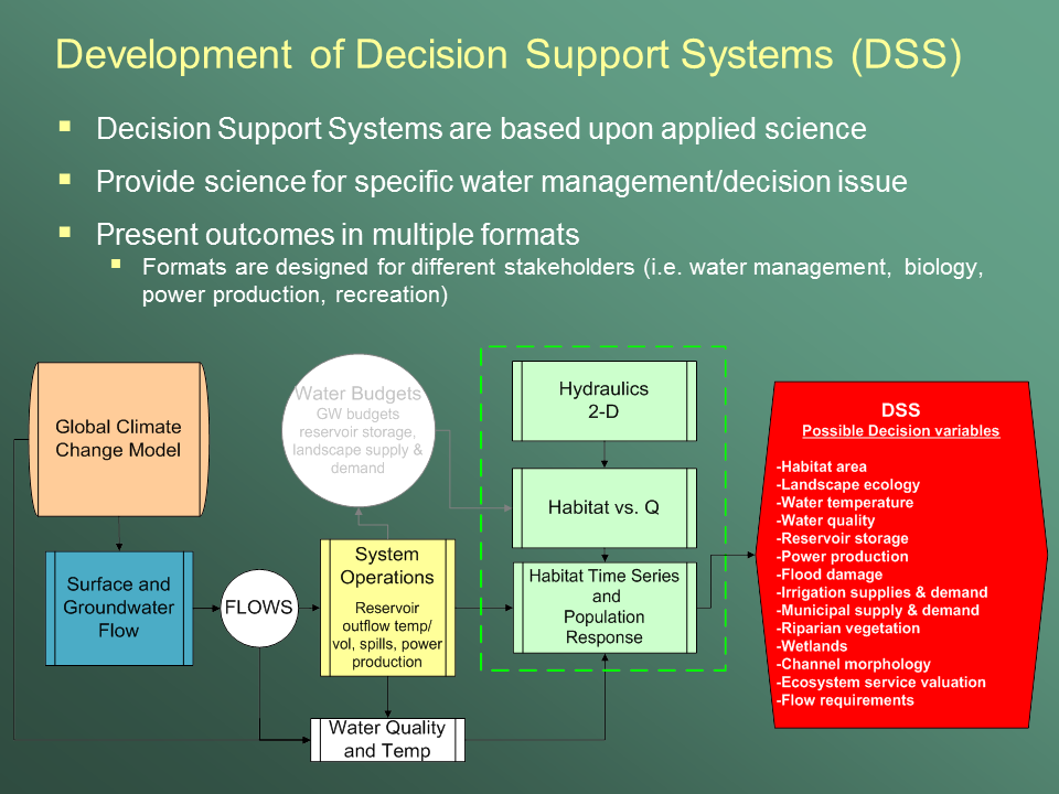 Example flowchart of DSS model linkages, processes, and possible decision variables.