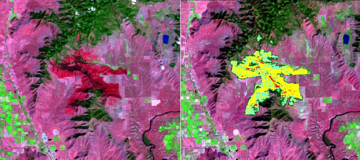Landsat image (left) and soil burn severity map (right) for the West Garceau fire located near Polson, Montana, on the Flathead Indian Reservation.