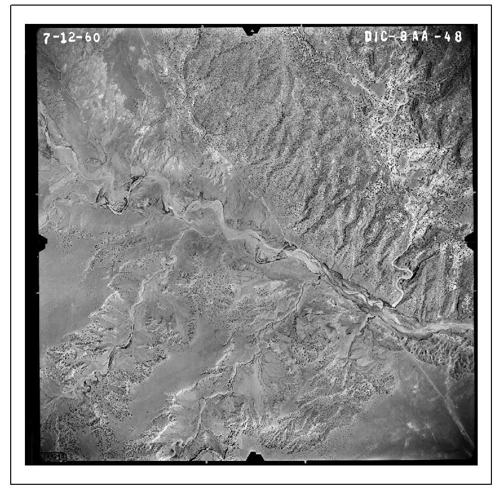 One of twelve 1960 vintage aerial photographs obtained from the U.S. Department of Agriculture Aerial Photography Field Office for a change detection study of the Escalante River in Utah.