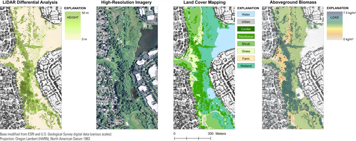 Lidar data and high-resolution imagery used to map available canopy biomass along a segment of Fanno Creek, Oregon.