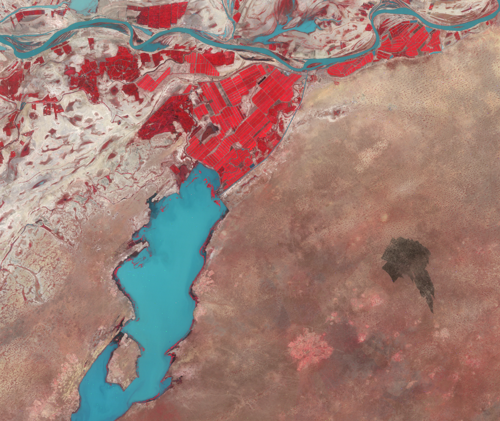 Oct. 15, 1989, Landsat 5 (path/row 205/49) — Irrigated fields near Rosso, Mauritania
