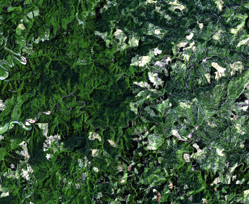 July 19, 1984, Landsat 5 (path/row 46/30) — logging patterns, OR, USA