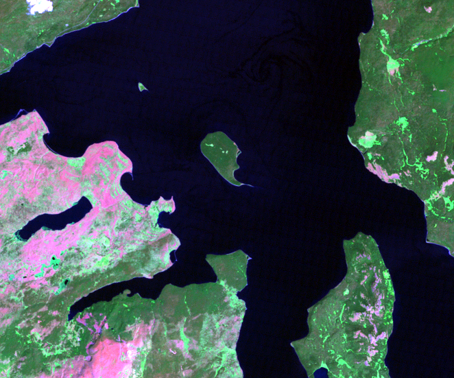 Aug. 1, 2003, Landsat 5 (path/row 38/29) — Frank Island in Yellowstone Lake at Yellowstone National Park, USA