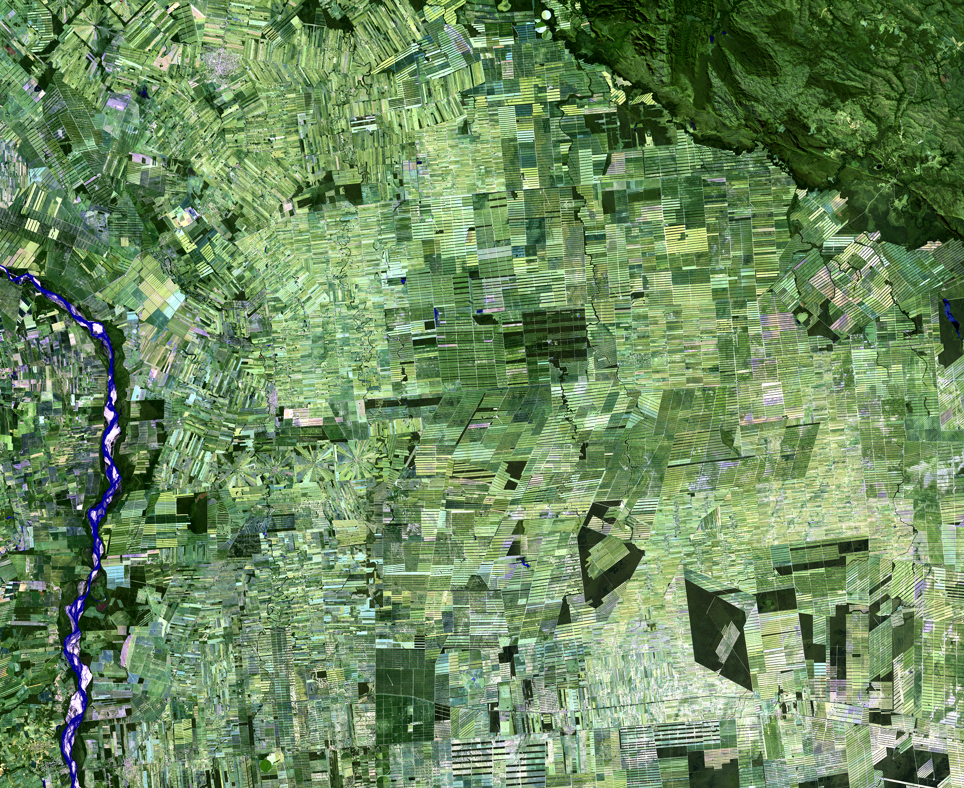 July 29, 2019, Landsat 8 (path/row 230/72) — Deforestation, Santa Cruz, Bolivia