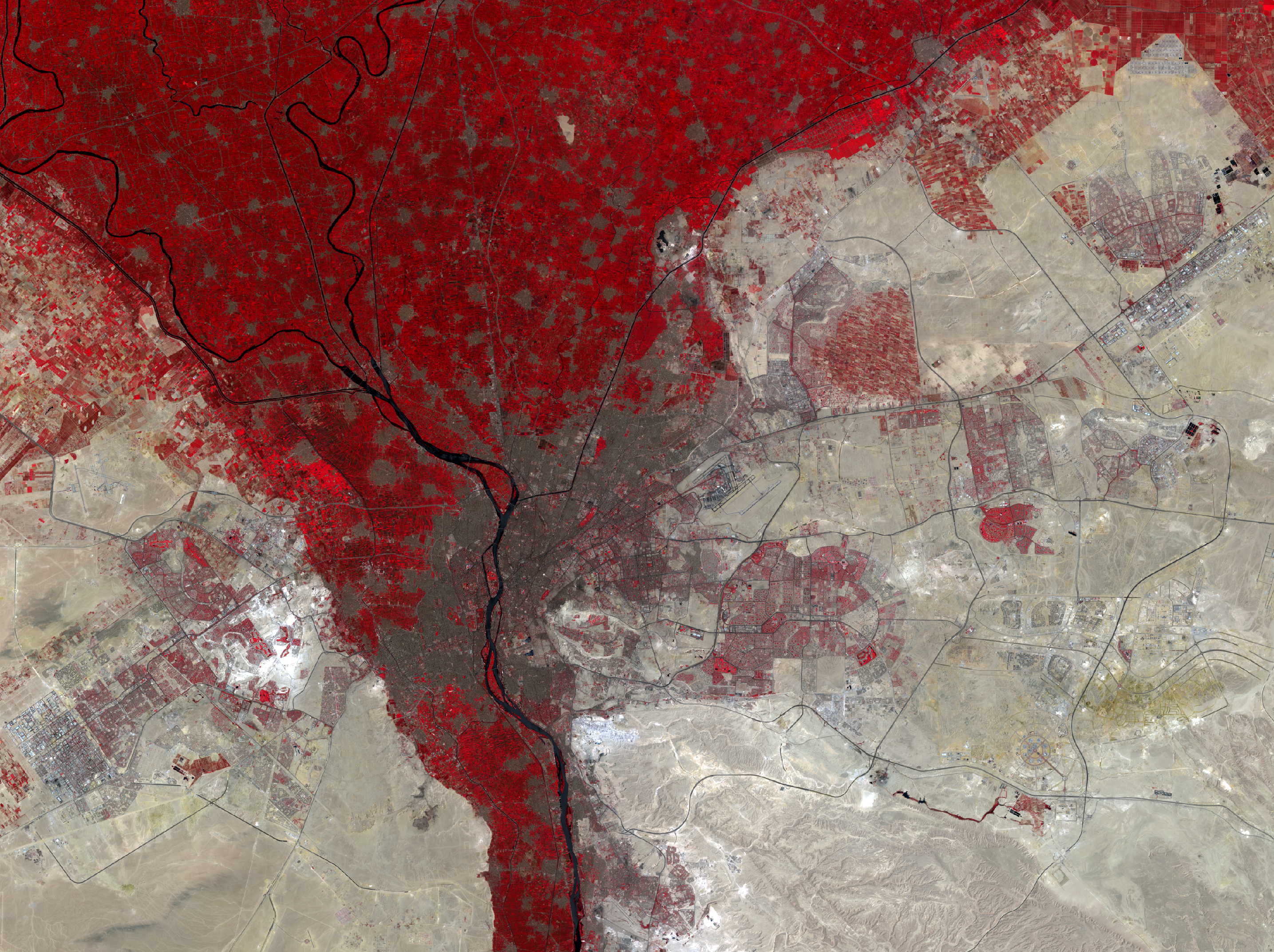 July 26 and Aug. 4, 2019, Landsat 8 (path/row 176,177/39) — Cairo, Egypt