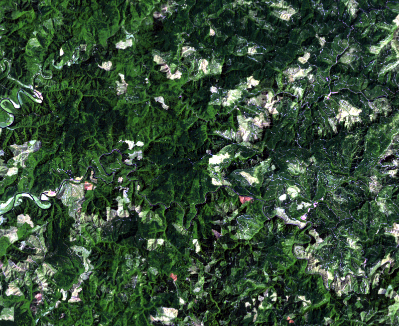 July 30, 1988, Landsat 5 (path/row 46/30) — logging patterns, OR, USA