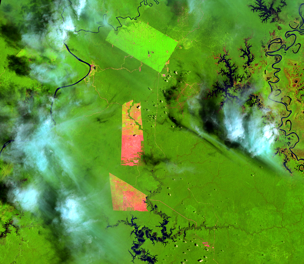 Feb. 7, 2014, Landsat 8 (path/row 100/65) — Papua, Indonesia