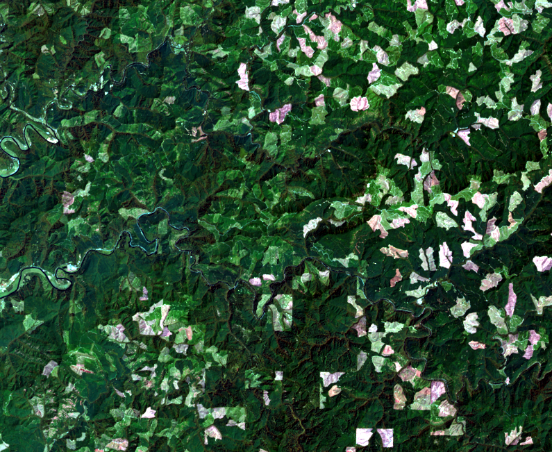 July 3, 2013, Landsat 8 (path/row 46/30) — logging patterns, OR, USA