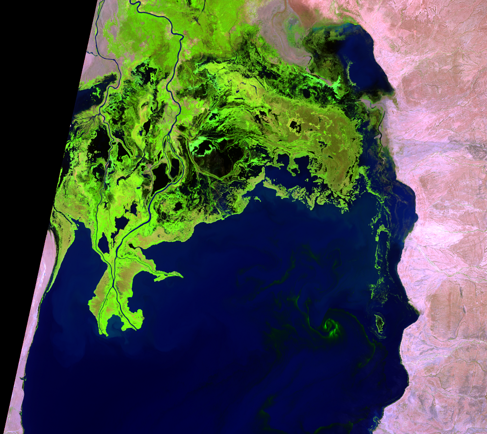 Jan. 28, 2015, Landsat 8 (path/row 169/57) — Omo River Delta, Kenya and Ethiopia