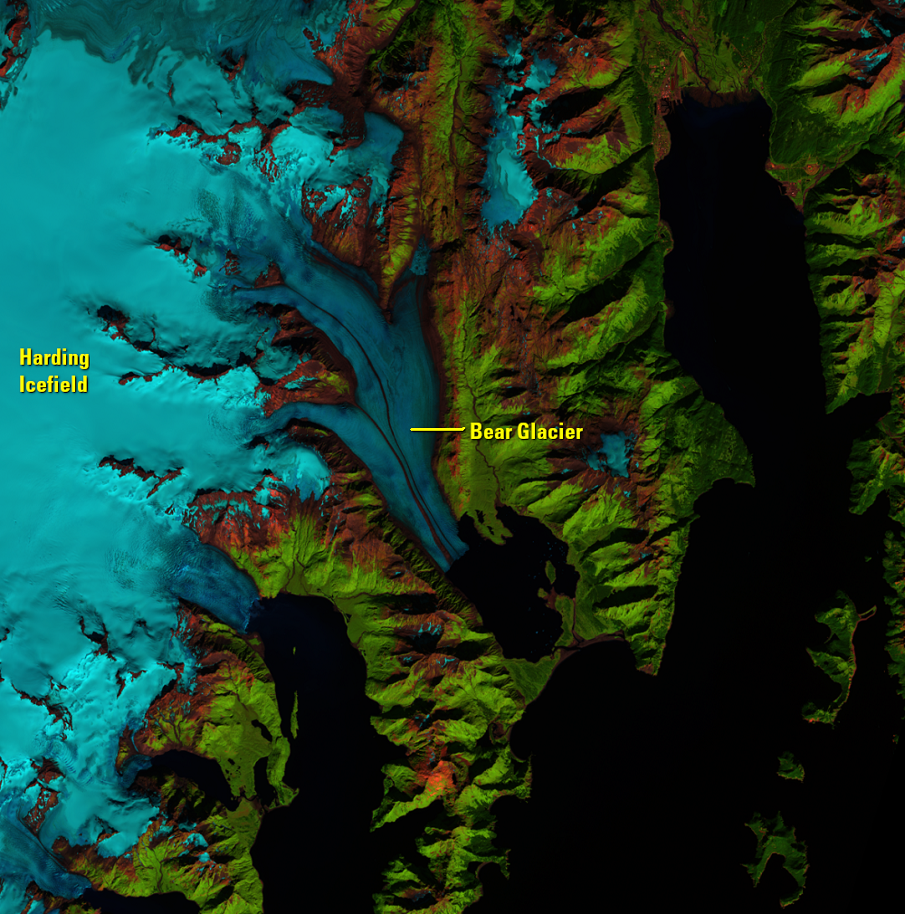Sep. 4, 2018, Landsat 8 (path/row 69/18) — Bear Glacier, Alaska, USA