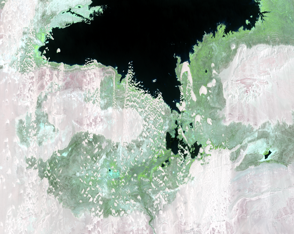 Aug. 19 and 28, 2013, Landsat 8 (path/row 175,176/44) — close up of Toshka Lakes, Egypt