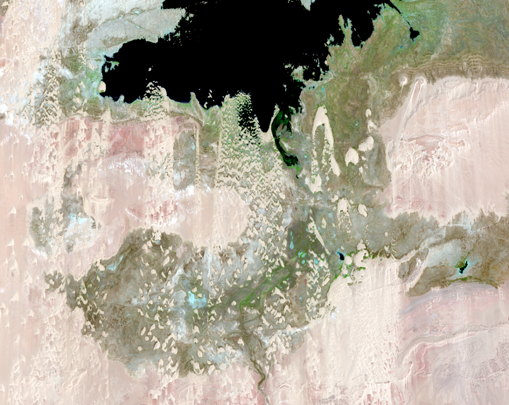 Aug. 23 and 30, 2017, Landsat 8 (path/row 175,176/44) — close up of Toshka Lakes, Egypt