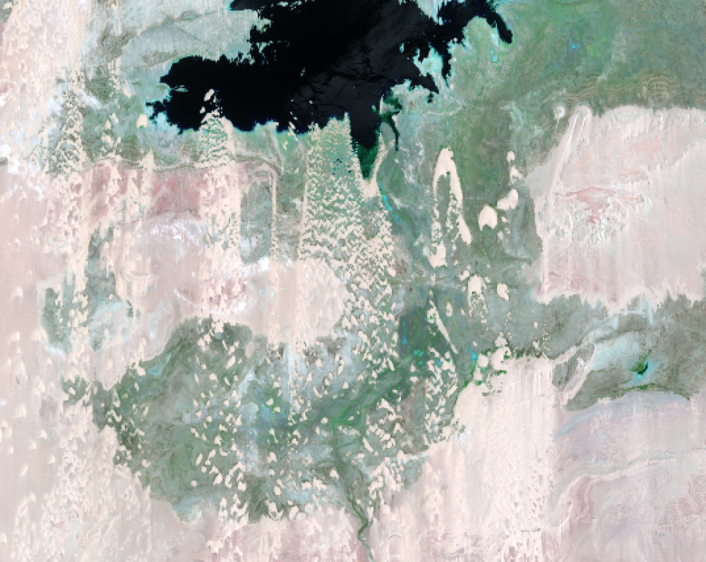 July 3 and 12, 2019, Landsat 8 (path/row 175,176/44) — close up of Toshka Lakes