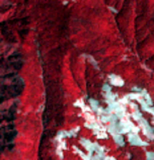 Mar. 17, 1993, Landsat 5 (path/row 27/46) — Region of sites used for NDVI analysis