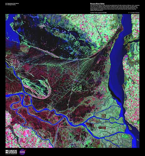 False color image of Parana River Delta. Deep blue river ribbons bend dramatically through meat red and pale green land.