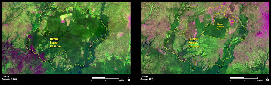 https://eros.usgs.gov/sites/eros.usgs.gov/files/imagegallery2/Okomu-Forest-images.jpg