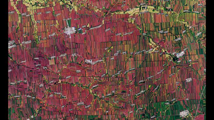 Extensive farmland in northeastern China shows a predictable pattern of vertical shapes.