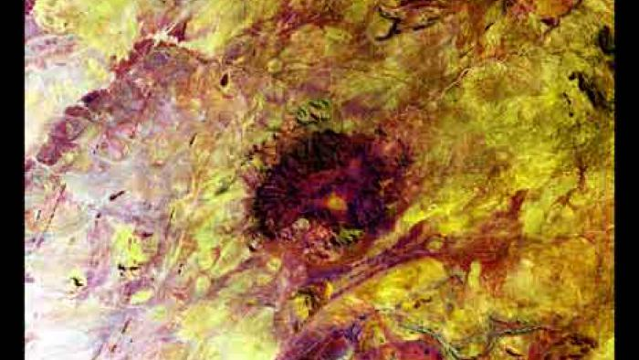 In the center of mottled reds and yellows is a dark red shape that is almost a circle.