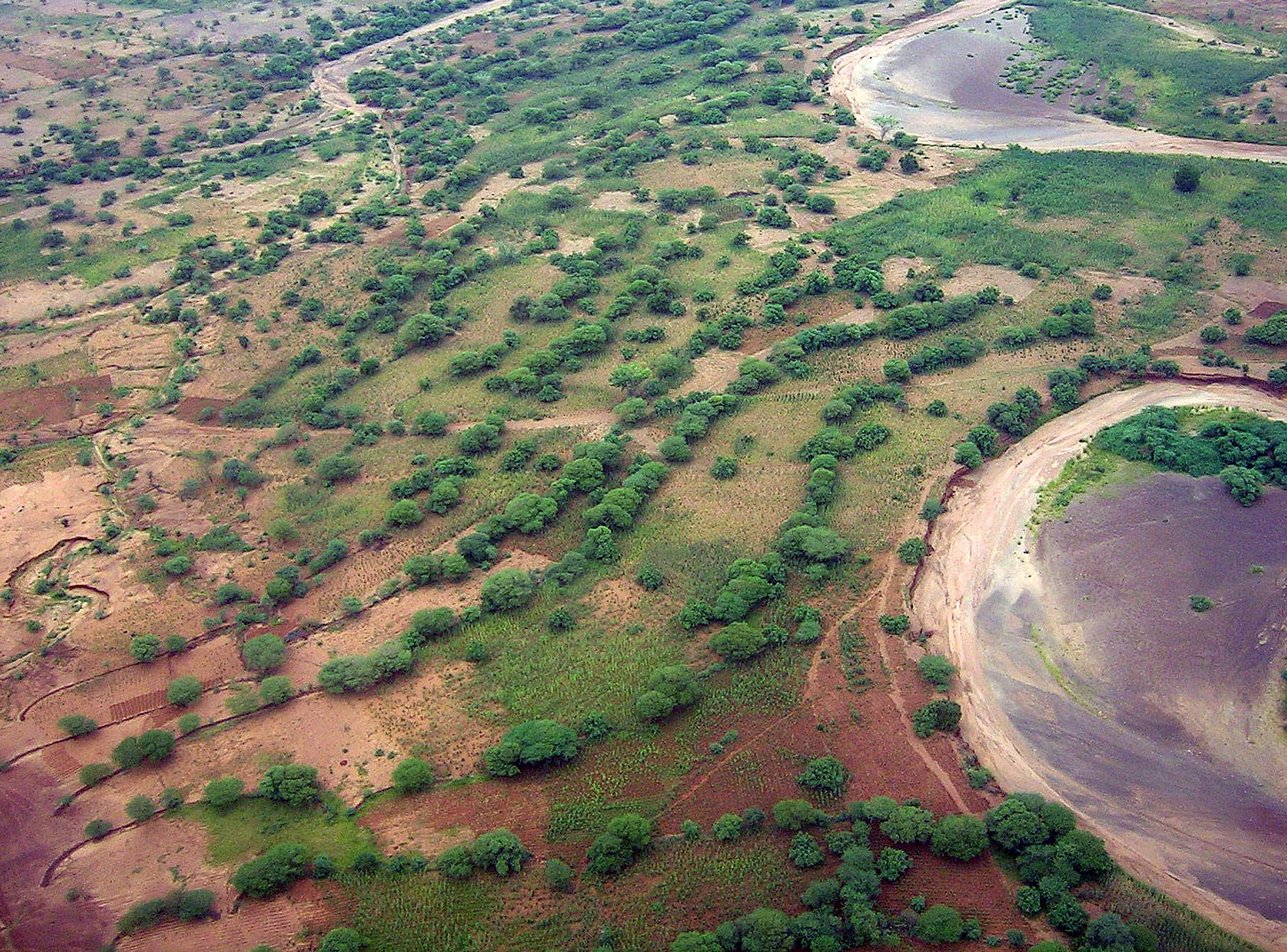 Aerial view near Madaoua, Niger of regeneration of trees along rock lines on the contour. Rainfall is captured, runoff and erosion are minimized, and crop production is increased. ©Gray Tappan/USGS