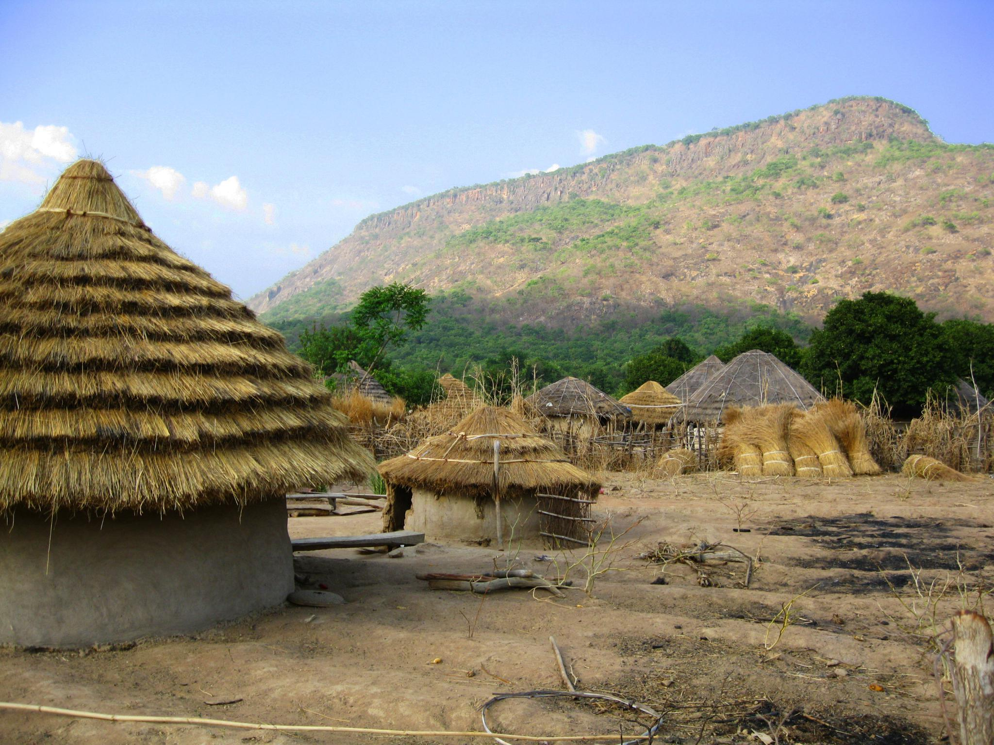 Village in Guinea  © Gray Tappan/USGS