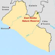 East Nimba locator map