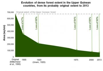 Evolution of forest in the Upper Guinean countries, from its probable original extent to 2013